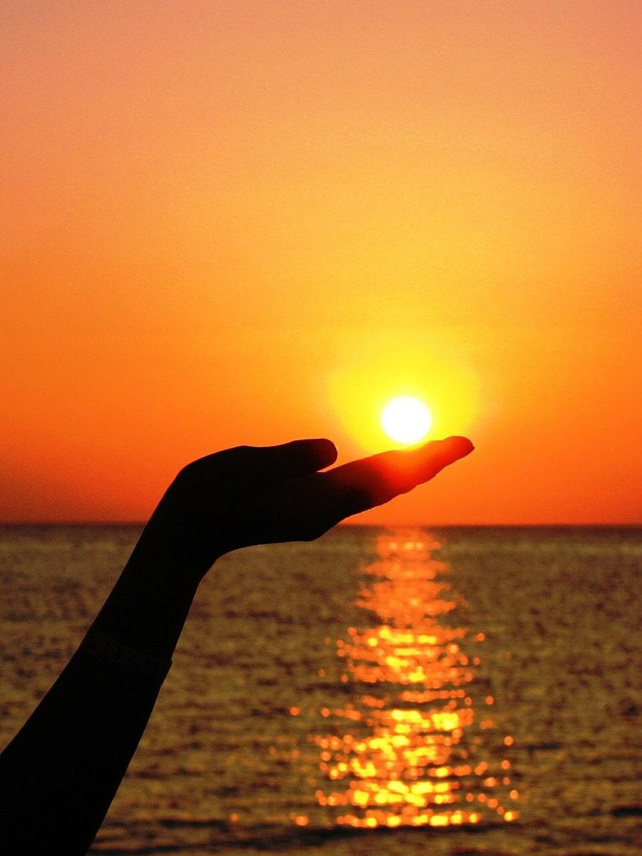 手のひらの上の太陽