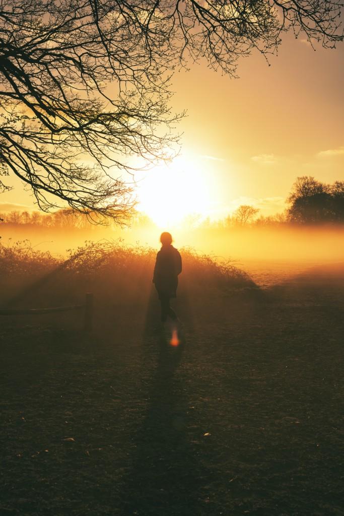 朝焼けの空を見る人